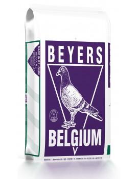 Beyers Zucht und Reise...