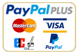 Zahlung PayPal Plus